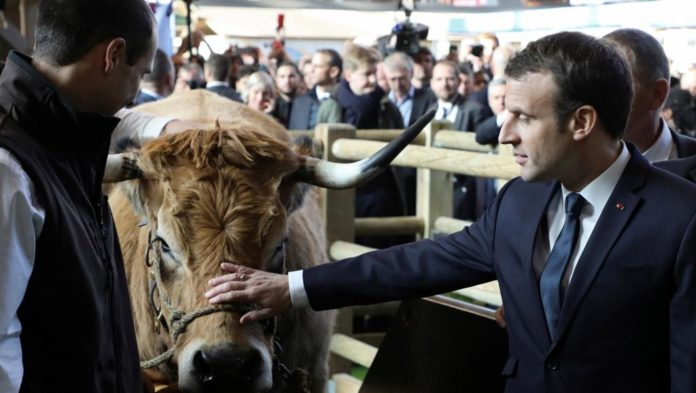 France emmanuel macron au salon de l agriculture pour for Salon d adoption porte de versailles